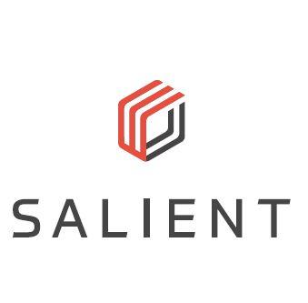 Salient Systems Company Logo